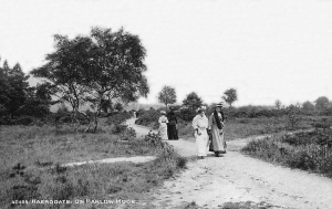Harlow Moor, around the turn of the century. (From oldukphotos.com)